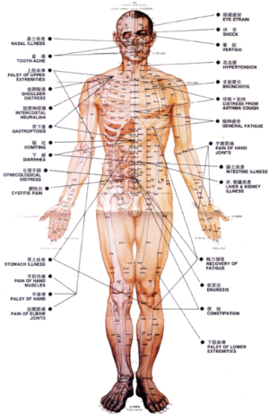 acupuncture facts